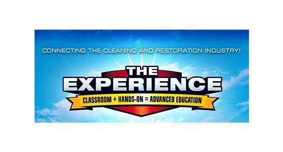 The-Experience Logo