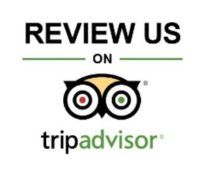 get more tripadvisor reviews